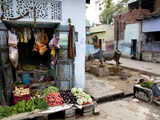 Village Life Scene with Grocery, Cattle, and Village Boy Photographic Print by Kent Kobersteen