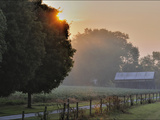 Filtered Sunlight in the Maple Grove Road Rural Historic District Photographic Print by Steve Raymer