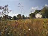 A Barn and Wildflowers in the Maple Grove Road Rural Historic District Photographic Print by Steve Raymer
