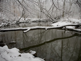 Falling Snow Outlines a Log across Rock Creek During Blizzard of 2010 Photographic Print by Stephen St. John
