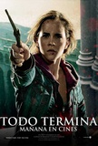 Harry Potter and the Deathly Hallows: Part II - Chilean Style Masterprint