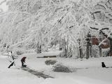 A Man Shoveling a Path in the Snow as His Pet Dog Relaxes Fotografisk tryk af Karen Kasmauski