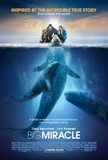Big Miracle Masterprint