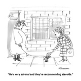"""He's very adrenal and they're recommending steroids."" - Cartoon Premium Giclee Print by Boris Drucker"