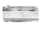 Each row in a huge field of corn is marked with a little seed packet for c… - New Yorker Cartoon Premium Giclee Print by Henry Martin