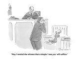"""""""May I remind the witness that a simple 'I see you' will suffice."""" - Cartoon Premium Giclee Print by Danny Shanahan"""