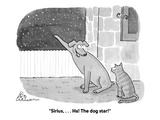 """Sirius, . . . Ha! The dog star!"" - Cartoon Premium Giclee Print by Leo Cullum"