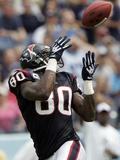 Texans Titans Football: Nashville, TN - Andre Johnson Bilder av Wade Payne
