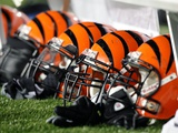 Bengals Patriots Football: Foxborough, MASSACHUSETTS - Cincinnati Bengals Helmets Fotografisk trykk av Michael Dwyer
