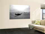 A Hawker Hurricane Aircraft in Flight Wall Mural by  Stocktrek Images