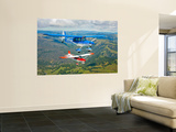 Two Champion Aircraft Citabrias in Flight Wall Mural by  Stocktrek Images