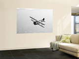 A Grumman F3F Biplane in Flight Wall Mural by  Stocktrek Images