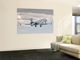 A Gulfstream G550 Eitam of the Israeli Air Force Wall Mural by Stocktrek Images
