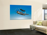 Two Grumman F8F Bearcats in Flight Wall Mural by  Stocktrek Images