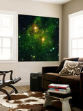 Two Extremely Bright Stars Illuminate a Greenish Mist in Deep Space Wall Mural by  Stocktrek Images