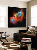 IC 1848, the Soul Nebula Wall Mural by  Stocktrek Images