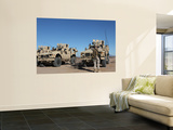 U.S. Marines Guides a Mine Resistant Ambush Protected All-Terrain Vehicle Wall Mural by  Stocktrek Images