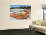 Chromatic Pool Hot Spring, Upper Geyser Basin Geothermal Area, Yellowstone National Park, Wyoming Wall Mural by  Stocktrek Images