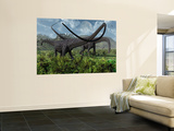 Two Giant Diplodocus Herbivore Dinosaurs Grazing During the Jurassic Period on Earth Wall Mural by  Stocktrek Images