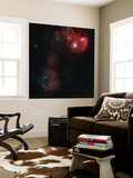 Widefield View of Of Simeis 147, the Flaming Star Nebula, and the Tadpole Nebula Wall Mural by  Stocktrek Images