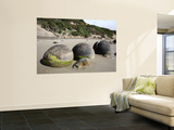 Moeraki Boulders, Koekohe Beach, New Zealand Wall Mural by  Stocktrek Images