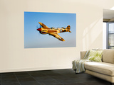 A P-40N Warhawk in Flight Wall Mural by  Stocktrek Images