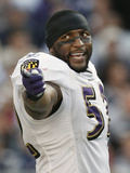 Ravens Patriots Football: Foxborough, MA - Ray Lewis Photographic Print by Winslow Townson