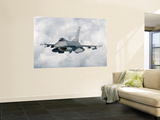 An F-16 from the Colorado Air National Guard in Flight over Brazil Wall Mural by Stocktrek Images
