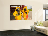 Firefighters Dressed in Hazmat Suits Wall Mural by  Stocktrek Images