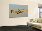 An Israeli Air Force F-15I Ra'Am Wall Mural by  Stocktrek Images
