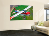 A Champion Aircraft Citabria in Flight Wall Mural by  Stocktrek Images