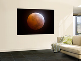 Lunar Eclipse Wall Mural by  Stocktrek Images