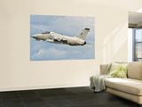 An Italian Air Force Amx Fighter Aircraft Wall Mural by  Stocktrek Images