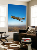 A P-51A Mustang in Flight Wall Mural by  Stocktrek Images