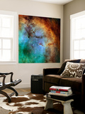 The Elephant Trunk Nebula Wall Mural by  Stocktrek Images