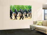 Infantry Soldiers of the Belgian Army in Full Riot Gear Wall Mural by  Stocktrek Images