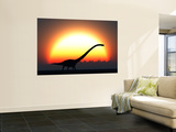 A Silhouetted Omeisaurus Walks Pass the Rising Sun at the Start of a New Day Wall Mural by  Stocktrek Images
