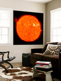 Solar Activity on the Sun Premium Wall Mural by  Stocktrek Images