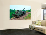 A Belgian Army Piranha Iiic with the Lcts-90 Cockerill Mk8 Gun Wall Mural by Stocktrek Images