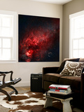 Constellation Cygnus with Multiple Nebulae Visible Wall Mural by  Stocktrek Images