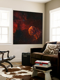 The Jellyfish Nebula Wall Mural by  Stocktrek Images