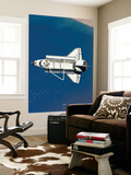 Space Shuttle Discovery Wall Mural by  Stocktrek Images