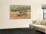 An M109 Self-Propelled Howitzer of the Israel Defense Forces Wall Mural by  Stocktrek Images
