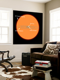 A Diagram Comparing the Sun to VY Canis Majoris Wall Mural by  Stocktrek Images