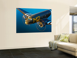 A Douglas C-53 Skytrooper in Flight Near Chino, California Wall Mural by  Stocktrek Images