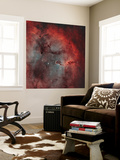 IC 1396, the Elephant Trunk Nebula Wall Mural by  Stocktrek Images