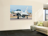 An Italian Air Force Eurofighter Typhoon at Grosseto Air Base, Italy Wall Mural by  Stocktrek Images