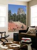 Devils Tower National Monument, Wyoming Wall Mural by  Stocktrek Images