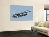 A Turkish-Built F-16 in Flight at the Izmir Air Show in Turkey Wall Mural by  Stocktrek Images