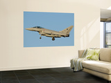 Side View of an Italian Air Force Eurofighter Typhoon Wall Mural by  Stocktrek Images